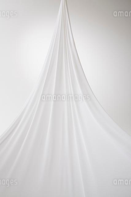 白背景にドレープ布の写真素材 [FYI01458719]