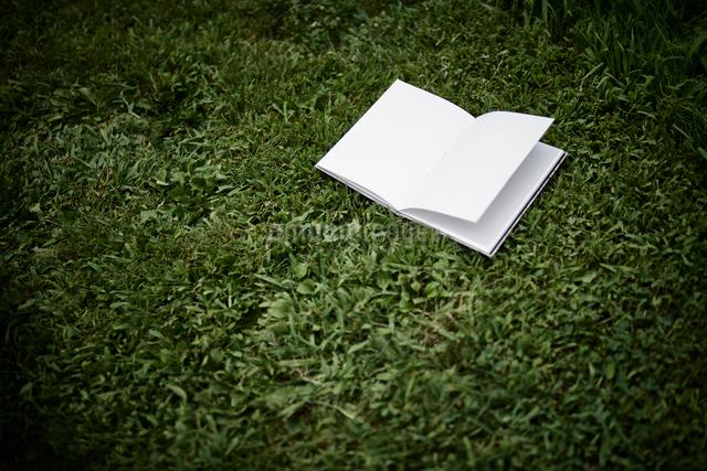 芝生の上の白い本の写真素材 [FYI01458731]