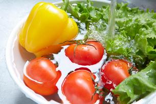 シンクでボウルに入れた野菜を洗うの写真素材 [FYI01458902]