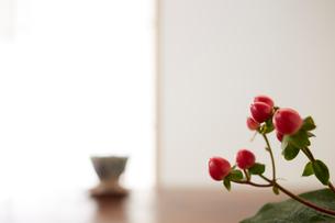 ヒペリカムと湯呑みの写真素材 [FYI01459061]
