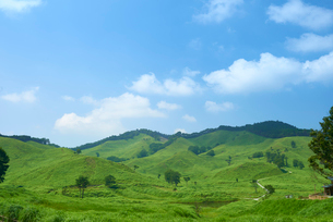 青空と高原の広大な風景の写真素材 [FYI01459146]