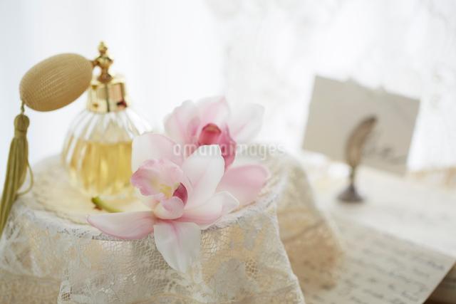 シンビジウムの花とレースの写真素材 [FYI01459147]