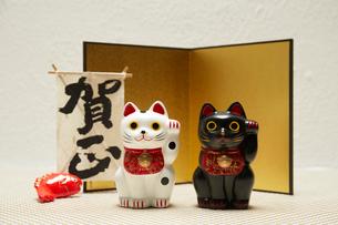 金屏風と白と黒の招き猫の写真素材 [FYI01459529]