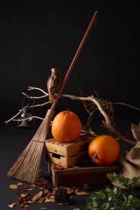 木箱に置かれた二個のハロウィンカボチャとほうきと鷹のオブジェの写真素材 [FYI01459853]