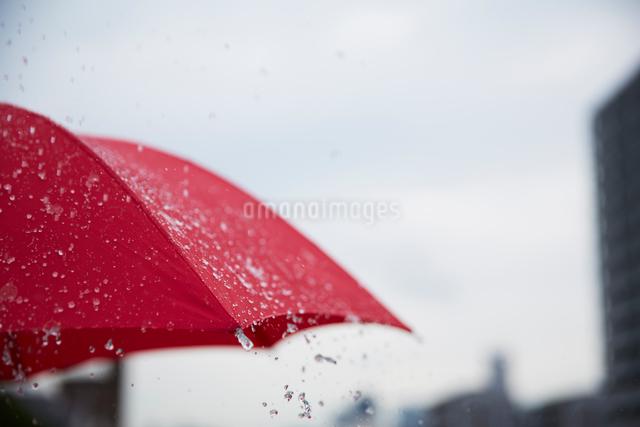 傘に付いた雨を飛ばしているの写真素材 [FYI01460057]