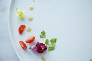 白いお皿に盛られた季節の前菜の写真素材 [FYI01460770]