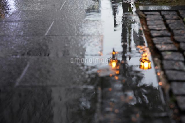 歩道のコンクリートに写る街灯の写真素材 [FYI01460864]