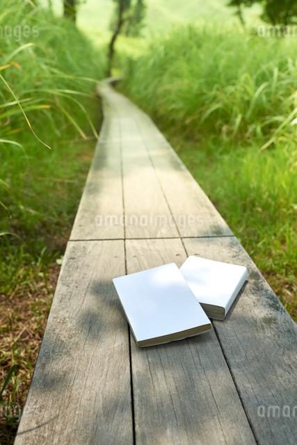 草むらの中の細い一本道と本2冊の写真素材 [FYI01461121]