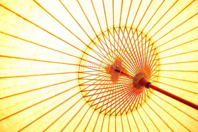 和傘の内側の写真素材 [FYI01461225]