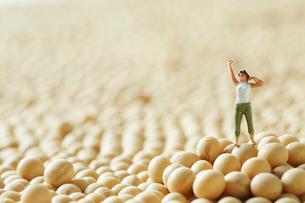 大豆の上でのびをする女性のミニチュアの写真素材 [FYI01461362]
