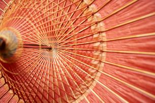 和傘の内側のアップの写真素材 [FYI01461562]