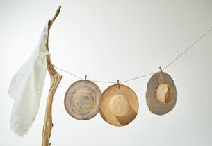 流木と紐につられた麦わら帽子の写真素材 [FYI01461625]