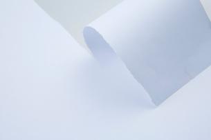 破いている途中の紙の写真素材 [FYI01461643]