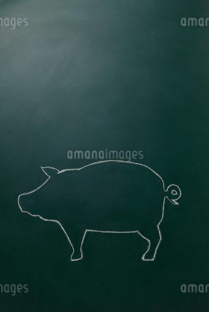 黒板に白いチョークで描いた豚のイラスト素材 [FYI01461646]