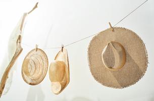 流木と紐につられた麦わら帽子の写真素材 [FYI01461686]