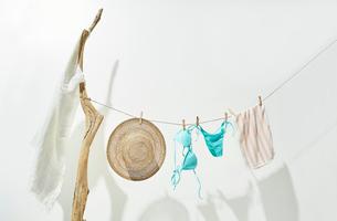 流木と紐につられた麦わら帽子と水着の写真素材 [FYI01461704]