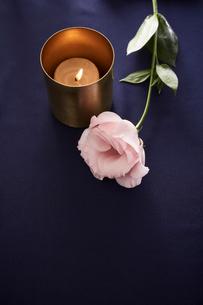 紺色のテーブルクロスの上に置かれたキャンドルとピンクの花の写真素材 [FYI01461722]