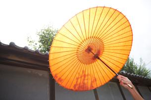 和傘の内側の写真素材 [FYI01461725]
