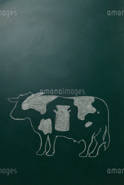 黒板に白いチョークで描いた牛のイラスト素材 [FYI01461964]