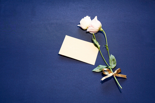 紺色テーブルクロスの上に置かれたピンクの花とメッセージカードの写真素材 [FYI01462109]