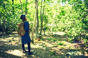 森を散策する女性の写真素材 [FYI01462643]