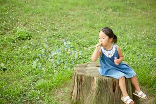 大きな切り株の上に座ってシャボン玉で遊ぶ少女の写真素材 [FYI01462767]