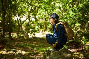 森林浴を楽しむ一人の女性の写真素材 [FYI01462860]