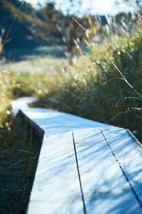秋の砥峰高原の朝の写真素材 [FYI01463125]