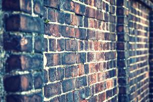 味のあるレンガ壁の写真素材 [FYI01463218]