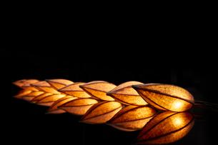 赤く光るライトの写真素材 [FYI01463418]