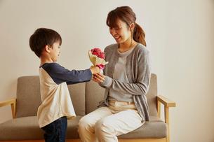 ソファーに座る女性にカーネーションを渡す男の子の写真素材 [FYI01463571]