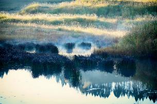 秋の砥峰高原の朝の写真素材 [FYI01463722]
