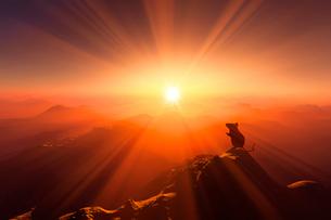 日の出とネズミのシルエットのイラスト素材 [FYI01463756]