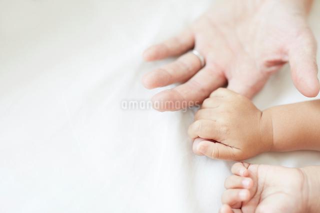 父の手を握りしめる赤ちゃんの手の写真素材 [FYI01463822]