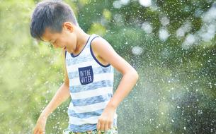水遊びをする男の子の写真素材 [FYI01463918]