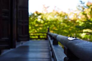 お寺の木造建築の手すりの写真素材 [FYI01463926]