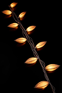 赤く光るライトの写真素材 [FYI01464014]