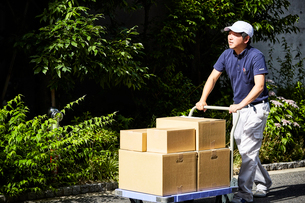 台車を使って段ボールを運んでいる男性の写真素材 [FYI01464070]