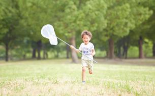 虫網を持って公園を走る男の子の写真素材 [FYI01464273]