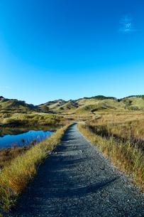 秋の砥峰高原の朝の写真素材 [FYI01464373]