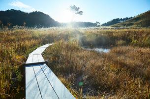 秋の砥峰高原の朝の写真素材 [FYI01464408]