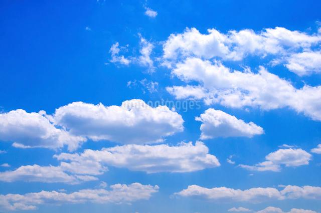 青空と白い雲の写真素材 [FYI01464461]