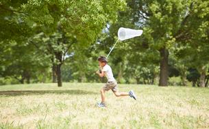 虫網を持って公園を走る男の子の写真素材 [FYI01464479]