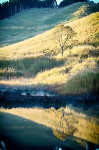 秋の砥峰高原の朝の写真素材 [FYI01464520]