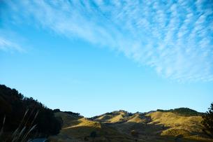 秋の砥峰高原の朝の写真素材 [FYI01464571]