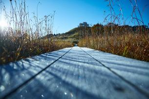 秋の砥峰高原の朝の写真素材 [FYI01464592]