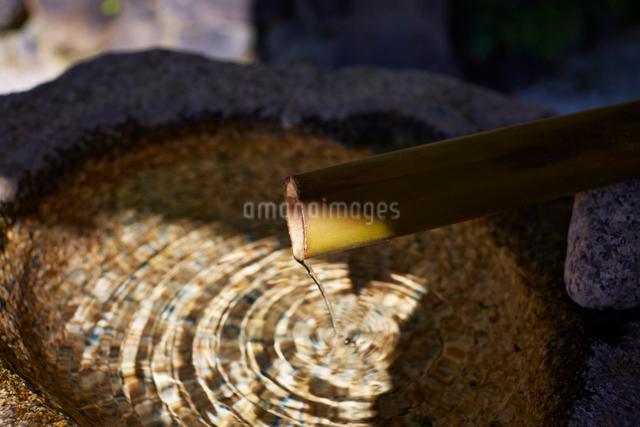 水鉢に落ちる水の写真素材 [FYI01464594]