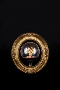 黒い背景の上にある楕円のフレームと電球の写真素材 [FYI01464600]