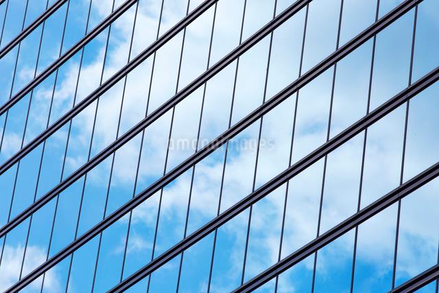 高層ビルの窓の写真素材 [FYI01464646]
