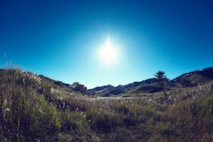 秋の砥峰高原の夕方の写真素材 [FYI01464656]